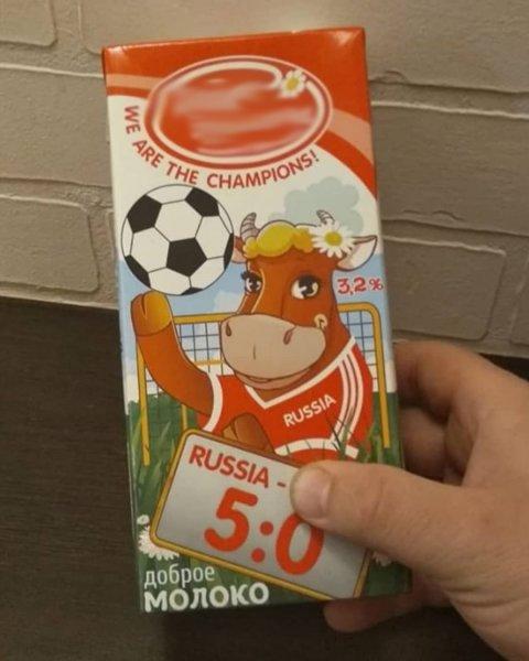 В Воронеже обнаружили корову, предсказавшую победу России со счетом 5:0