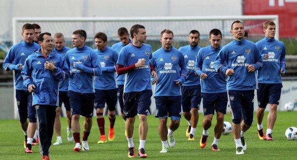 Выдра Гарри назвал победителя матча Россия - Египет