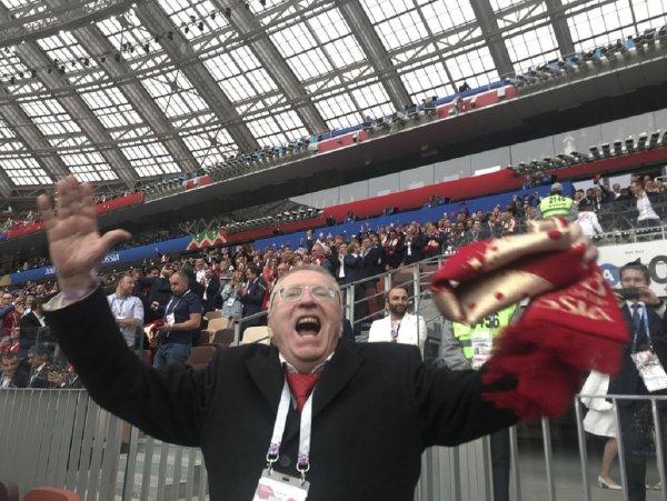 Жириновский рассказал, кто победит в ЧМ-2018 после вылета России